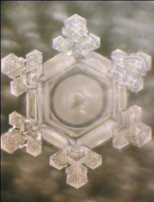 Thank You water crystal