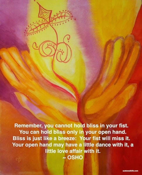 Osho, Hold Bliss